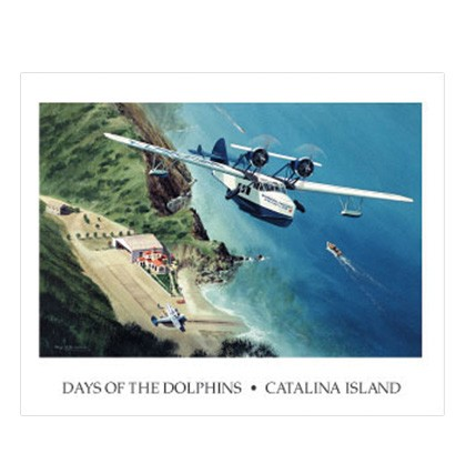 Days of the Dolphins Poster