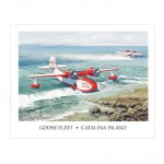 Goose Fleet Poster